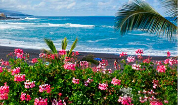Reasons to buy a villa in Tenerife. Island climate